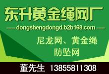 安徽省东升黄金绳网厂 尼龙网、黄金绳、 防坠网 董先生13855811308